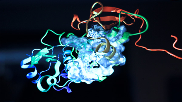 Future Lab: 3D Molecular Visualization